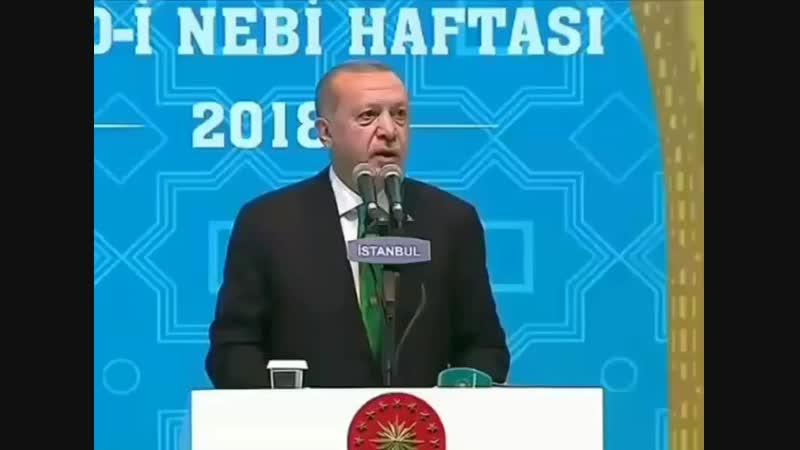 Recep rayyip erdogan