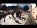 Jordan Godwin BMX Hard 360