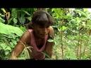 Путешествие по реке Амазонка. Познавательное видео.