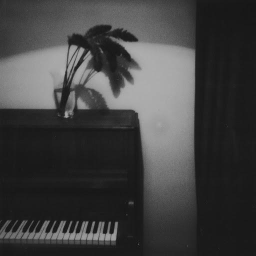 Алина Орлова альбом Little Bird's Song