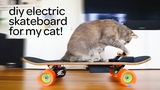 DIY electric skateboard for my cat!