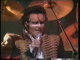 Adam &amp The Ants, Human beings, live