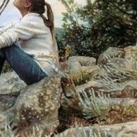 Мария Вертелецкая, 14 марта 1993, Оренбург, id148057698