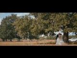 Антон и Ксения (свадебный клип 16.08.18)