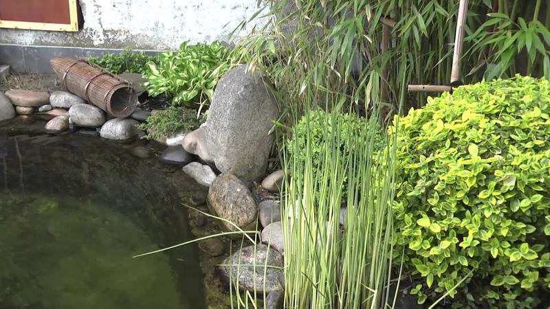 Le jardin et bassin japonais de Stafsan