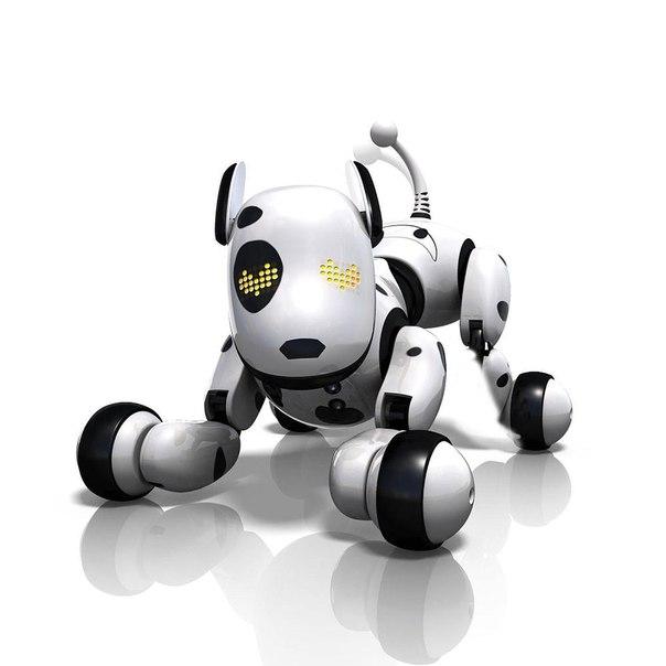 Супер Роботы - питомцы!