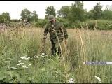 Кладоискатель Козульского района собрал коллекцию старинных монет