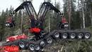 Xem công nghệ khai thác gỗ của người ta