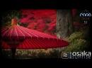 DI.FM - OSAKA SUNRISE 051 with RAPA 11-01-2017