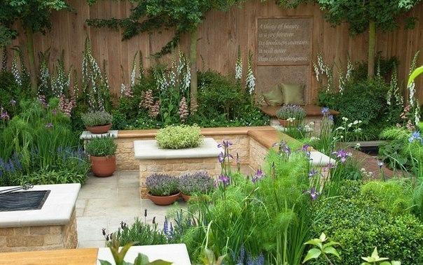 Чтобы в саду всегда пахло вкусно, сделайте уголок душистых трав!