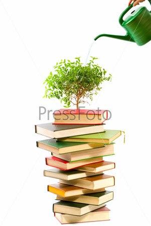 Сказка города читать
