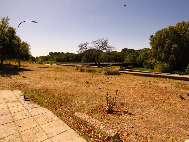 Академгородок Буэнос-Айреса можно, Впрочем, какието, университет, несколько, факультета, образование, факультетов, здесь, факультет, линии, както, чтобы, стало, резко, почёте, очень, Ничего, самом, второй