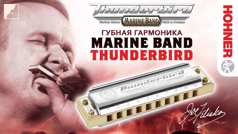 Обзор губной гармоники HOHNER Marine Band Thunderbird