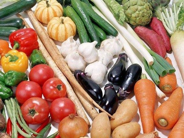 какие сорта лучше хранятся 1. картофель: лорх, темп, берлихинген, ласунок, эпрон, северная роза, столовый 19.2. капуста белокочанная: зимовка, амагер, браунтвейгская, подарок, зимняя