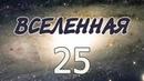 Эксперимент «Вселенная 25»
