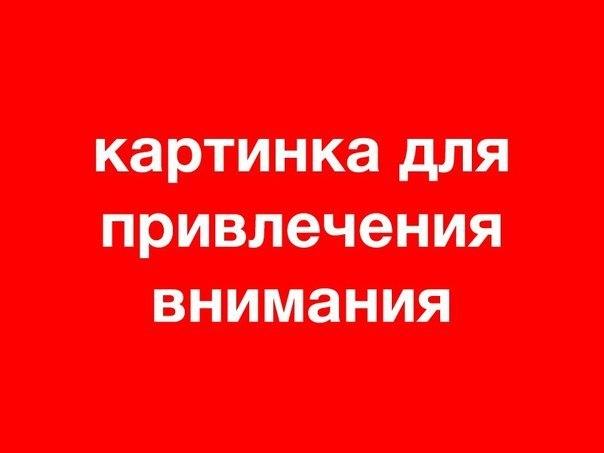 Новости пушкинского района санкт-петербурга сегодня происшествия