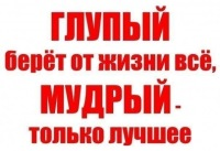 Apis Фамилия, 15 августа 1988, Санкт-Петербург, id11076991
