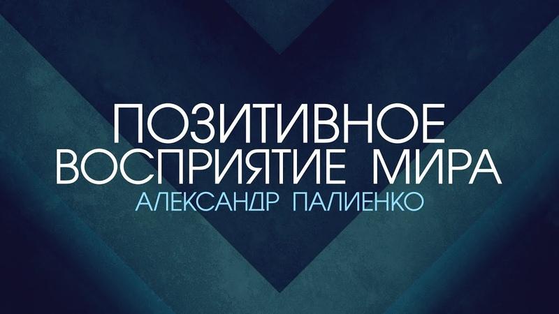 Позитивное восприятие мира. Александр Палиенко.