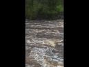 Сестрорецк.Река Сестра.