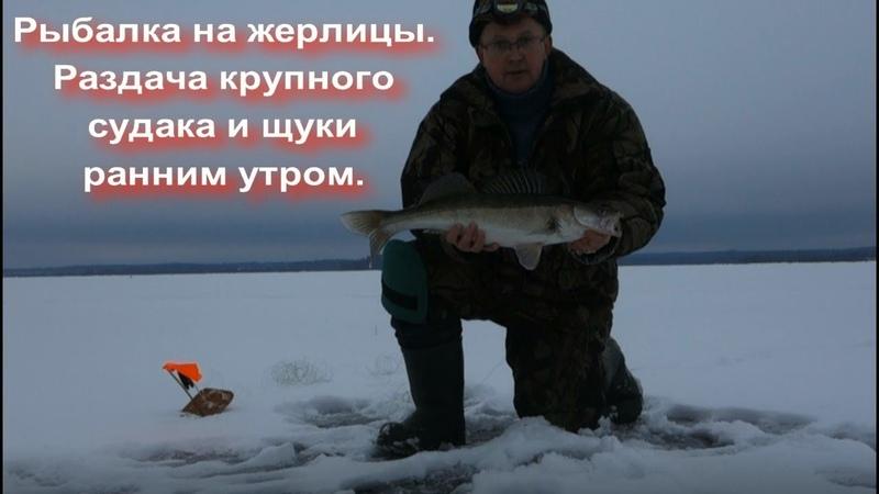 Рыбалка на жерлицы. Раздача крупного судака и щуки ранним утром.