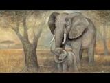Saint Saens_ Carnival of the Animals~LElephant (The Elephant)