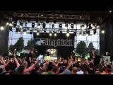 Limp Bizkit - Re-Arranged + Killing In The Name (Live @ GreenFest, St. Petersburg, RUSSIA - 29.06.13)