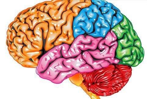 *10 вещей, отрицательно влияющих на мозг*