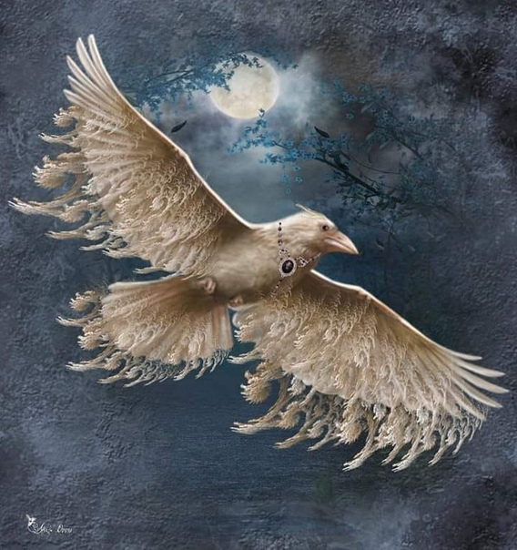 Как ты думаешь, говорит, какая птица самая красивая Не знаю, говорю, наверное, лебедь Нет, старик покачал головой. Тогда павлин. Нет. Никогда! Но ведь не попугай же Старик смеется: Нет, конечно.
