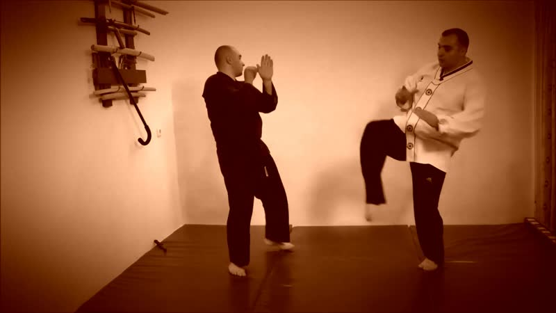 Rebel Hapkido Series 합기도 By Vidadi Hajiyev (21)