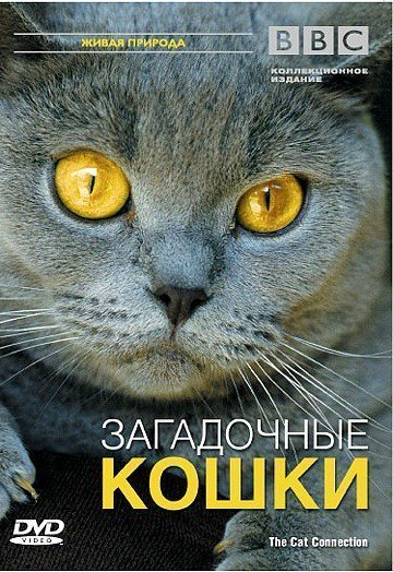 BBC: Загадочные кошки (2002)