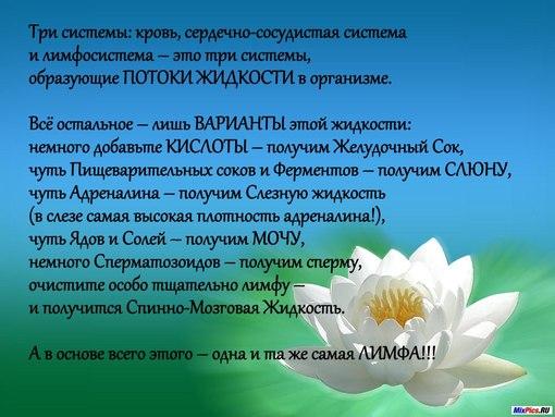 domashnee-video-dlya-vzroslih-s-zrelimi
