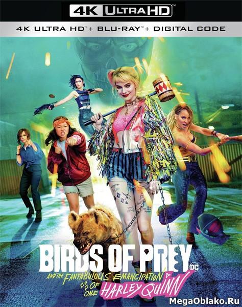 Хищные птицы: Потрясающая история Харли Квинн / Birds of Prey: And the Fantabulous Emancipation of One Harley Quinn (2020) | UltraHD 4K 2160p