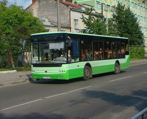 Автобусы трамваи