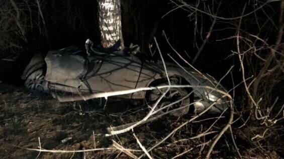 Автомобиль съехал в кювет и врезался в дерево под Тулой, пять человек погибли, рассказал РИА Новости представитель УМВД региона Андрей Ярцев. По его словам, ДТП произошло на трассе Новомосковск