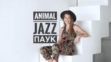ПАУК - ANIMAL ДжаZ Cover by Ксюша Минаева