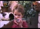 Смішні приколи про тварин Вусо-лапо-хвіст 13
