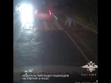 В Москве водитель сбил пешеходов на зебре, убрал их с дороги и уехал