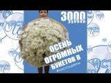 ОГРОМНЫЙ букет от Чистоцветы 3000 р