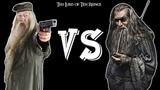 Gandalf VS Dumbledore (EPIC DUEL)
