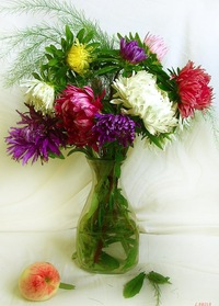 Доставка цветов в столине образец заполнения доставки цветов