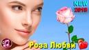 Роза Любви Сергей Ищенко Красивая Песня о любви ПРЕМЬЕРА 2018 ❤️