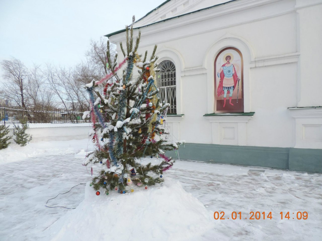 Елочка в церковном дворе (03.02.2014)