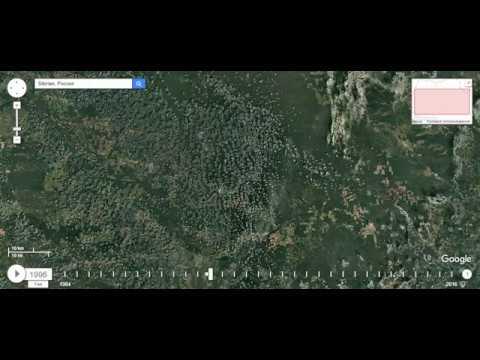 Вырубка лесов сибири(Иркутская область) при Путине
