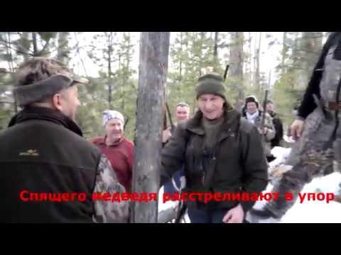 Как губернатор Иркутской области Левченко медведя убивал.