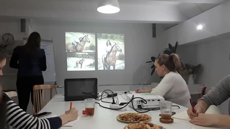Моменты теоретического мастеркласса Хочу снимать с лошадьми!