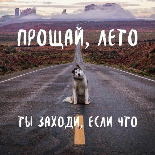 Фото №456262139 со страницы Анастасии Боровиковой