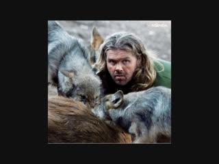 Шон Эллис: вожак волчьей стаи ijy 'kkbc: dj;fr djkxmtq cnfb
