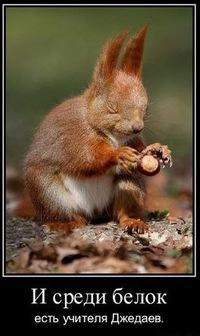 Squirrel Miracle, 3 апреля 1994, Москва, id95637243