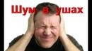 Шум и звон в ушах. Лечение шума в ушах и голове при атеросклерозе сосудов головного мозга