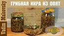 Консервация грибная икра из опят Как сделать грибную икру Мальковский Вадим
